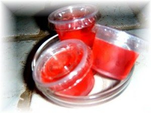 Watermelon Jolly Rancher Jello Shots
