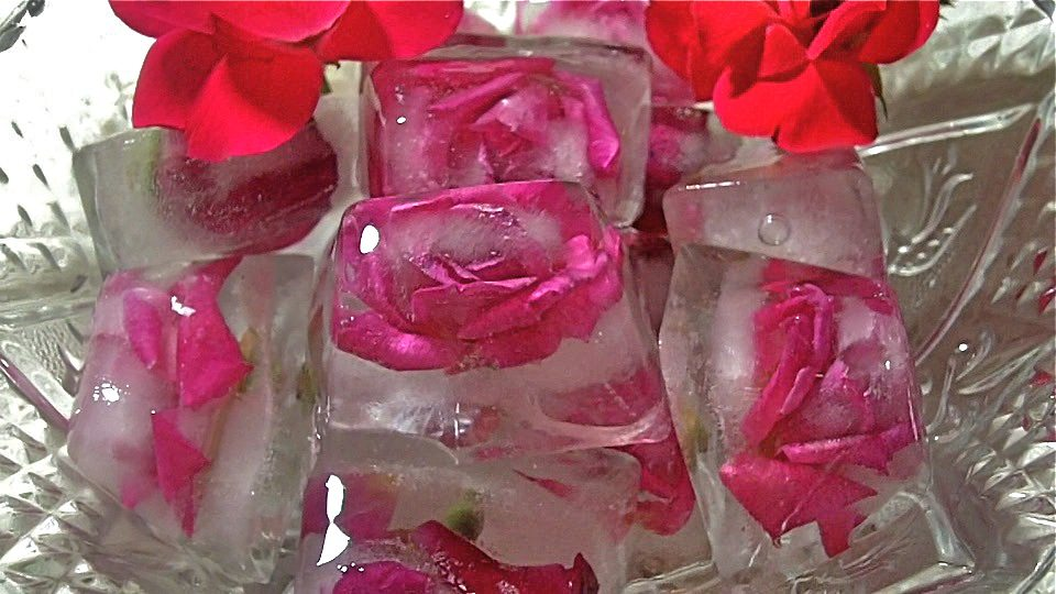Fresh Floral Ice Cubes