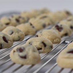 chocolate chip cookie dough cheesecake bites recipe