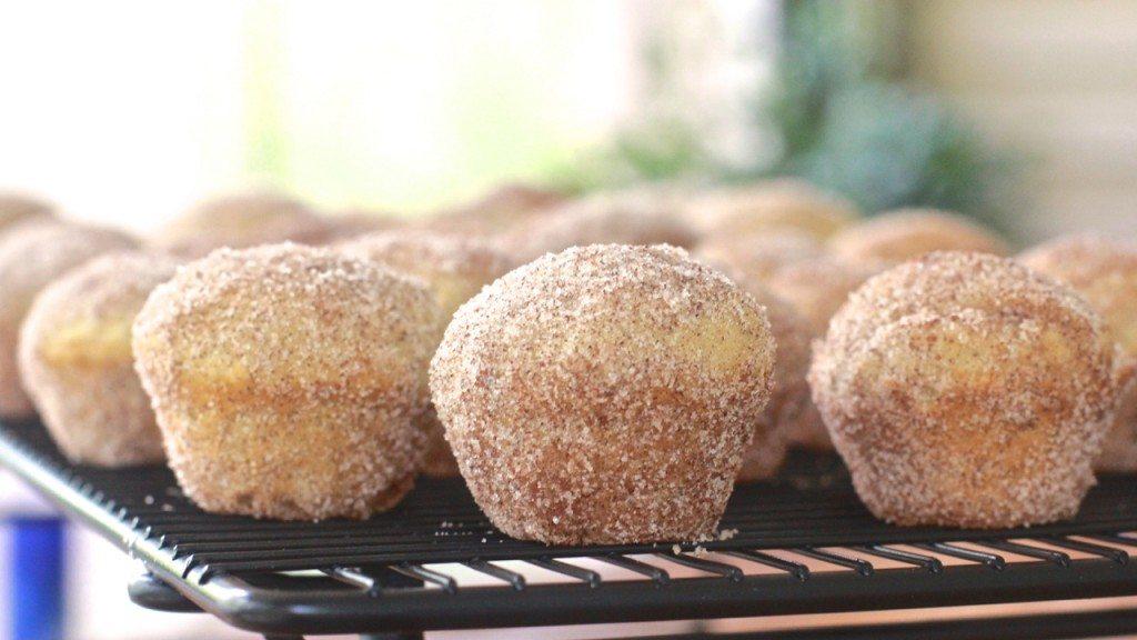best cinnamon sugar doughnut muffins