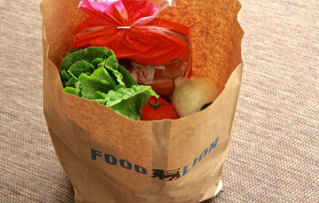 foodlion 1