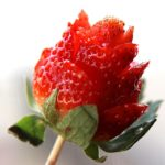 how to make strawberry roses tutorial